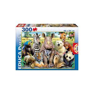 Puzzles junior 300 piezas foto de clase
