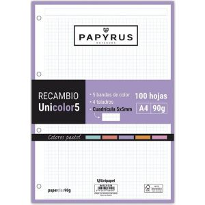 Recambio uni5 a4 100h 90g 4 taladros cuadricula 5x5 5 colores de banda tonos pastel