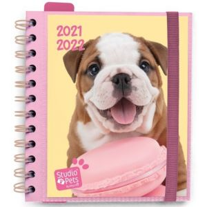 AGENDA ESCOLAR 8º 2021-22 DIA PAGINA STUDIO PETS DOGS