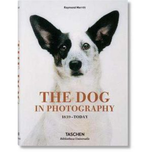 THE DOG IN PHOTOGRAPHY 1839- TODAY