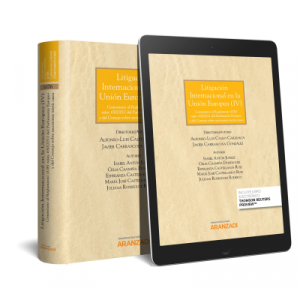 LITIGACION INTERNACIONAL EN LA UNION EUROPEA (IV) (PAPEL + E-BOOK)