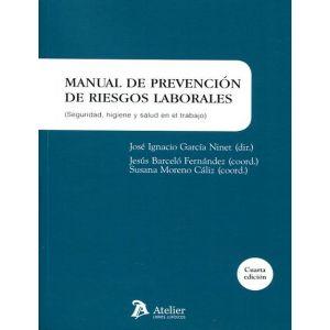MANUAL DE PREVENCION DE RIESGOS LABORALES : SEGURIDAD  HIGIENE Y SALUD EN EL TRA