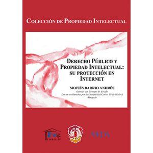 DERECHO PUBLICO Y PROPIEDAD INTELECTUAL: SU PROTECCION EN INTERNET