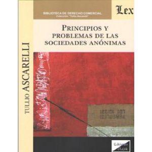 PRINCIPIOS Y PROBLEMAS DE LAS SOCIEDADES ANONIMAS